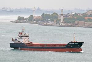 Photo of SELAHATTIN ASLAN 2 ship