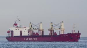 Photo of HEDVIG BULKER ship