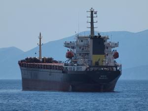 Photo of NEREUS ship