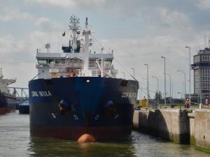 Photo of CORAL PATULA ship