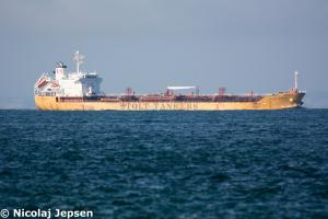Photo of STOLT MEGAMI ship