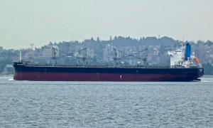 Photo of BULK PERU ship