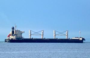 Photo of DORIC VALOUR ship