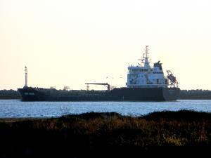 Photo of WISBY ARGAN ship