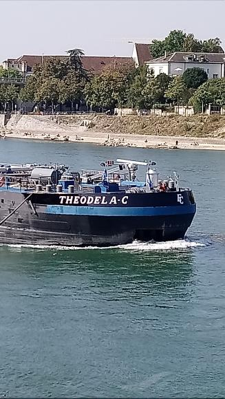 THEODELA C photo