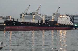 Photo of ANNE I ship
