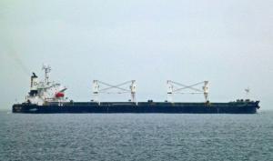 Photo of DENSA LION ship