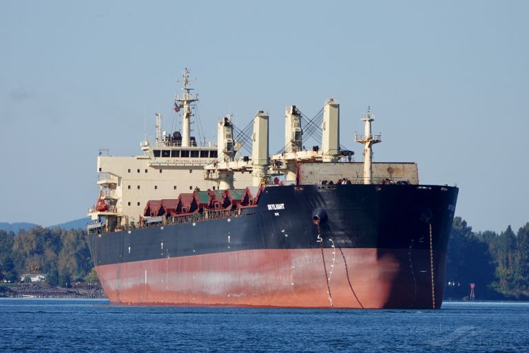 Skylight Bulk Carrier Details And Current Position Imo 9434711 Mmsi 538007012 Vesselfinder