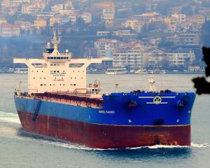 Photo of ANANGEL MARINER ship