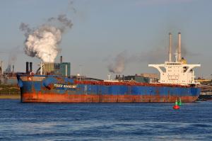 Photo of TIGER SHANDONG ship