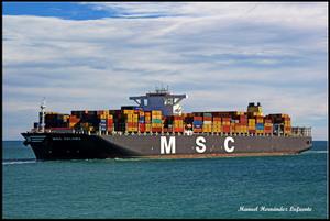 Photo of MSC PALOMA ship