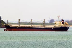 Photo of ORIENTAL BEAUTY ship