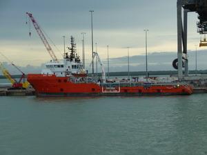 Photo of PACIFIC VIGOUR ship