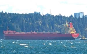 Photo of PAN FREESIA ship