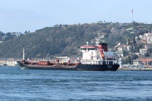 Photo of METIN KA ship