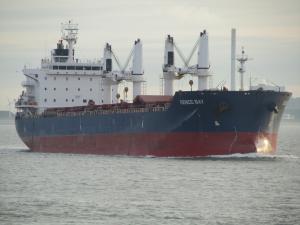 Photo of GENCO BAY ship