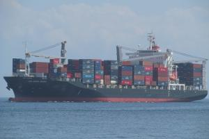 Photo of LOS ANDES BRIDGE ship