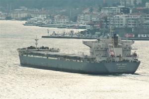 Photo of BLUE WAVE ship