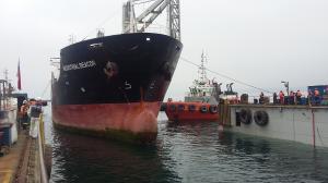 Photo of ELITE FAITH ship