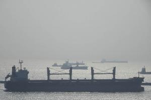 Photo of DARYA LAKSHMI ship