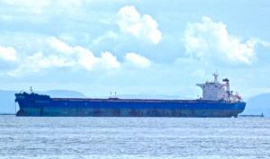 Photo of BRAVE SAILOR ship