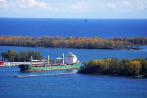 Photo of RUDDY ship