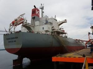 Photo of TASIK SAKURA ship