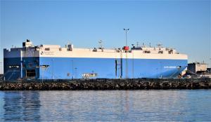 Photo of GLOVIS COMPANION ship