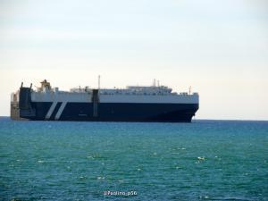Photo of MSC IMMACOLATA ship