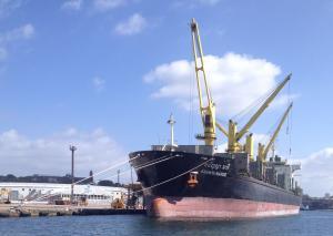Photo of ANANYA NAREE ship