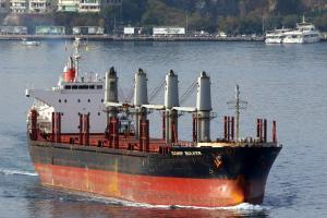Photo of IDSHIP BULKER ship