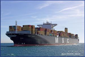 Photo of MSC VEGA ship