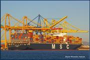 MSC CAPELLA (MMSI: 373031000)