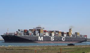 Photo of MSC BERYL ship