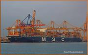 MSC LAURENCE (MMSI: 371582000)