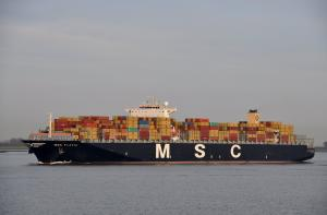 Photo of MSC FLAVIA ship