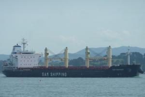 Photo of SAM PANTHER ship