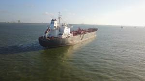 Photo of ALPINE HIBISCUS ship