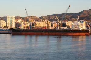 Photo of GLOBAL HARMONY ship