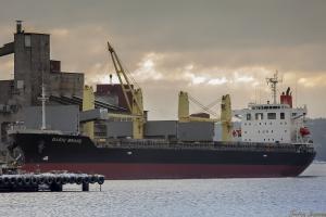 Photo of BASIC BRAVE ship