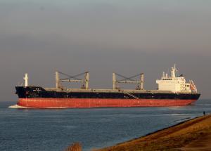 Photo of ASIAN CHAMPION ship