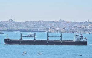 Photo of ASIAN TRIUMPH ship