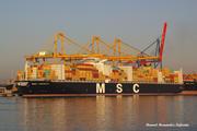 MSC TARANTO (MMSI: 636092247)