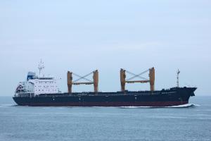 Photo of DOROTHEA OLDENDORFF ship