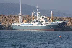 Photo of PINO MONTERO 3 ship