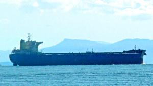 Photo of TOM SELMER ship