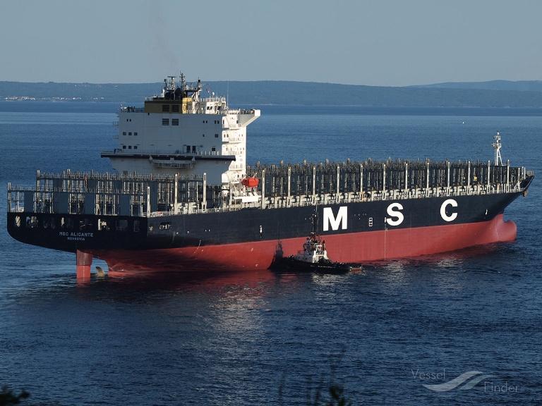 MSC ALICANTE photo