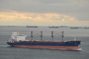 Photo of MINANUR CEBI 1 ship
