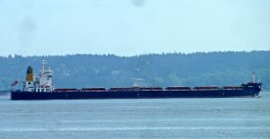 Photo of GLOBE DANAE ship