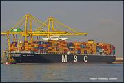 MSC RAPALLO (MMSI: 636092271)